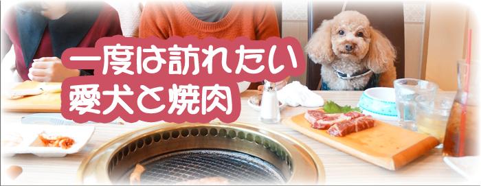 愛犬と焼肉