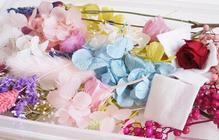 ハーバリウム花材の選び方、オススメの花屋さん(通販)を紹介します