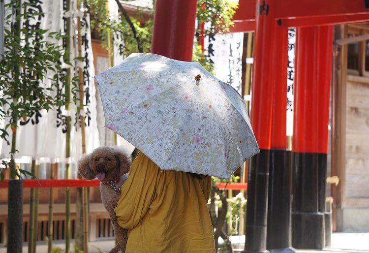 手作り日傘でお出かけ